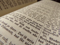 The Place of Scripture in the Reformation